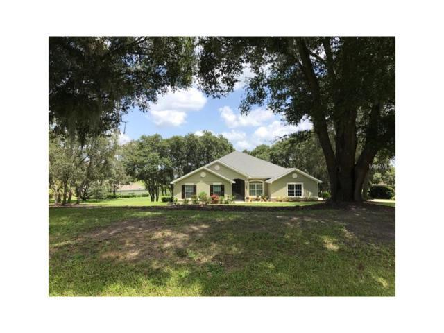 36601 Honey Tree Court, Eustis, FL 32736 (MLS #W7633794) :: KELLER WILLIAMS CLASSIC VI