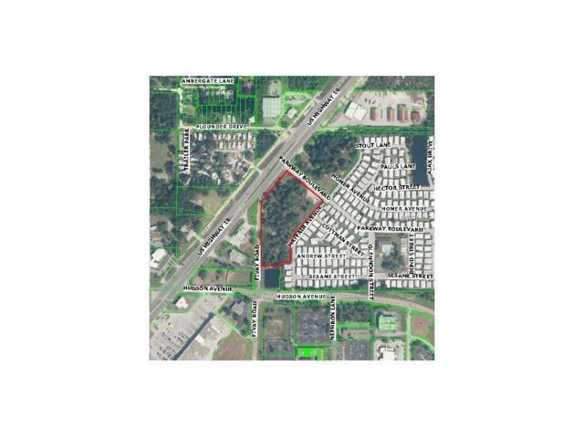 Highway 19 Fivay Highway, Hudson, FL 34667 (MLS #W7633813) :: Team Bohannon Keller Williams, Tampa Properties