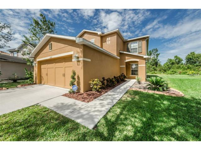 31522 Spoonflower Circle, Wesley Chapel, FL 33545 (MLS #W7634110) :: Team Bohannon Keller Williams, Tampa Properties