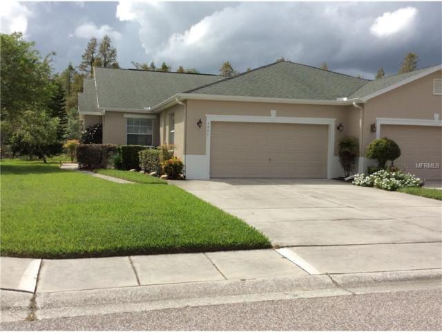 7341 Cleopatra Drive, Land O Lakes, FL 34637 (MLS #W7634432) :: Arruda Family Real Estate Team