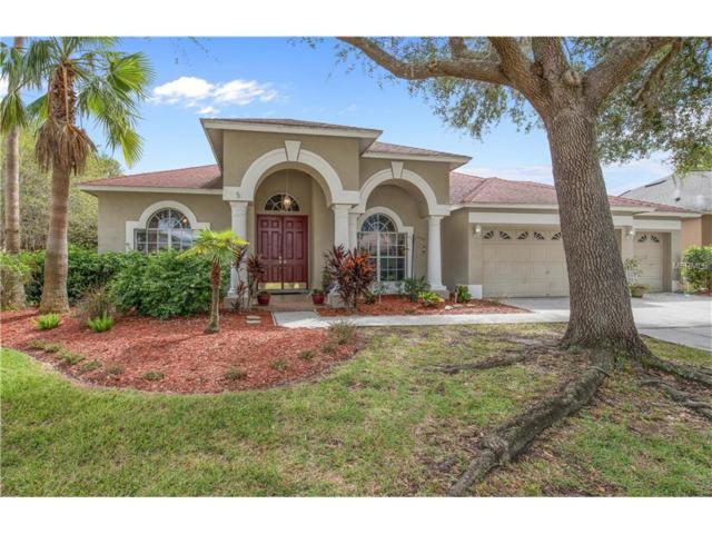19215 Wind Dancer Street, Lutz, FL 33558 (MLS #W7634444) :: Arruda Family Real Estate Team