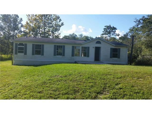 10741 Olsen Street, New Port Richey, FL 34654 (MLS #W7634491) :: Arruda Family Real Estate Team