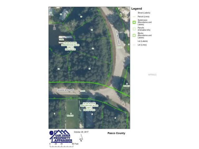 lot 93 Seaview Boulevard, Hudson, FL 34667 (MLS #W7634598) :: The Duncan Duo Team