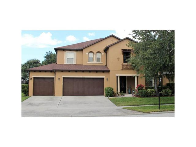 10131 Malpas Point, Orlando, FL 32832 (MLS #W7634681) :: Griffin Group