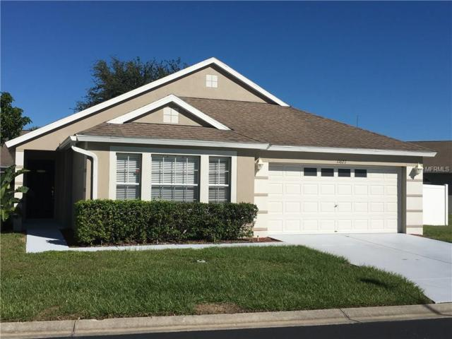 11627 Leda Lane, New Port Richey, FL 34654 (MLS #W7634912) :: The Lockhart Team