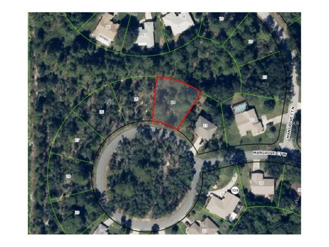 10 Mangrove Court W, Homosassa, FL 34446 (MLS #W7635117) :: The Duncan Duo Team