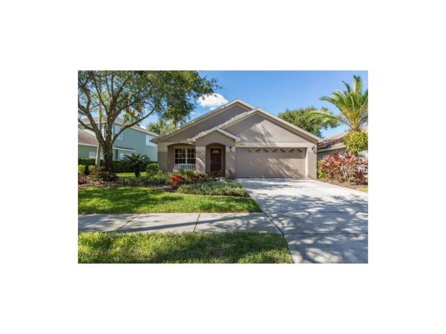 9913 Bridgeton Drive, Tampa, FL 33626 (MLS #W7635381) :: Cartwright Realty