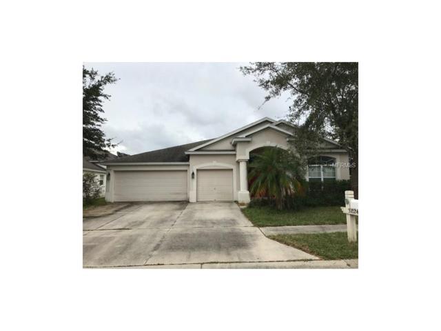 31024 Edendale Drive, Wesley Chapel, FL 33543 (MLS #W7635395) :: Team Bohannon Keller Williams, Tampa Properties