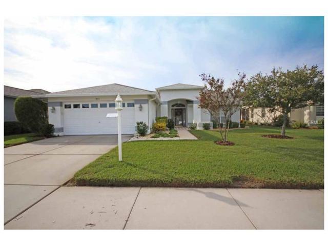 1441 Canberley Court, Trinity, FL 34655 (MLS #W7635396) :: Delgado Home Team at Keller Williams