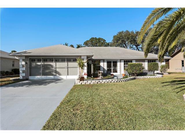 8141 Shalom Drive, Spring Hill, FL 34606 (MLS #W7635426) :: Dalton Wade Real Estate Group