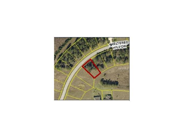19564 Sheltered Hill Drive, Brooksville, FL 34601 (MLS #W7635438) :: The Lockhart Team