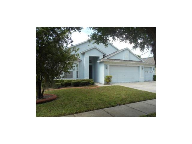 Tampa, FL 33625 :: Cartwright Realty