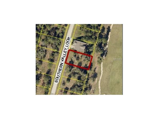 4097 Southern Valley Loop, Brooksville, FL 34601 (MLS #W7635464) :: The Duncan Duo Team