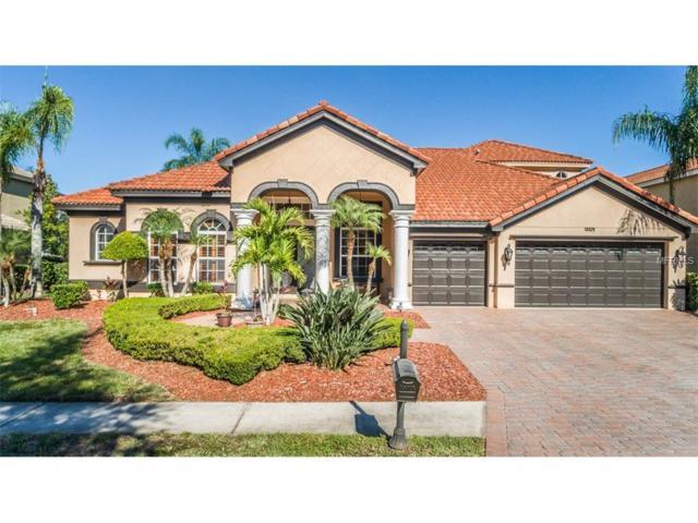 10529 Garda Drive, Trinity, FL 34655 (MLS #W7635523) :: The Lockhart Team