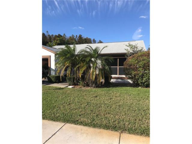 11601 Scotch Pine Drive, New Port Richey, FL 34654 (MLS #W7635565) :: Team Bohannon Keller Williams, Tampa Properties