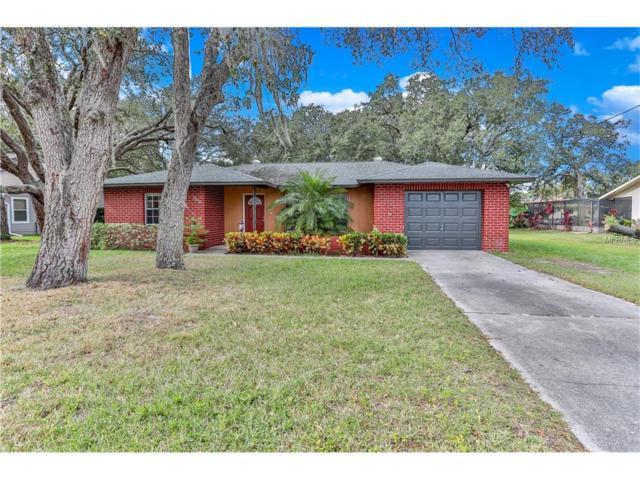 2459 Covington Avenue, Spring Hill, FL 34608 (MLS #W7635574) :: NewHomePrograms.com LLC