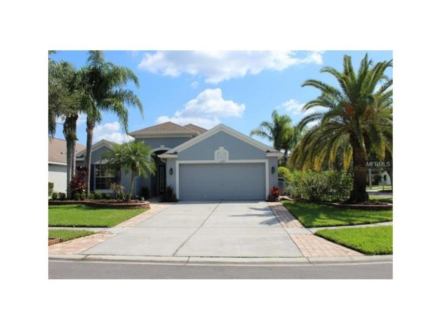 11309 Cypress Reserve Drive, Tampa, FL 33626 (MLS #W7635601) :: Griffin Group