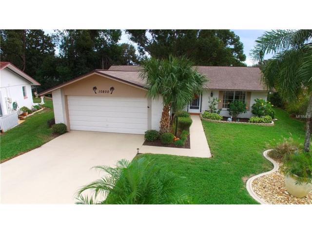 10800 Sierra Nevada Drive, Port Richey, FL 34668 (MLS #W7635602) :: Dalton Wade Real Estate Group