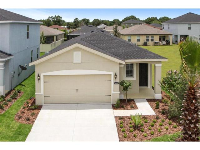 14227 Poke Ridge Drive, Riverview, FL 33579 (MLS #W7635620) :: The Lockhart Team