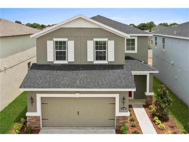 14233 Poke Ridge Lane, Riverview, FL 33579 (MLS #W7635623) :: The Lockhart Team