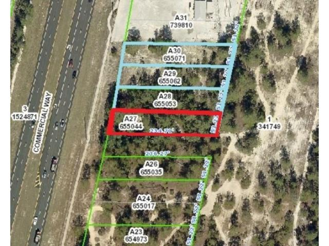 7000 Commercial Way, Weeki Wachee, FL 34613 (MLS #W7635778) :: Team Buky