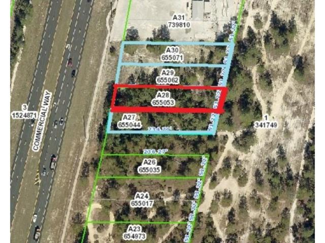 7004 Commercial Way, Weeki Wachee, FL 34613 (MLS #W7635780) :: Team Buky