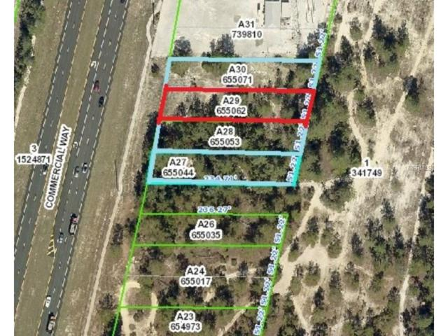 7008 Commercial Way, Weeki Wachee, FL 34613 (MLS #W7635781) :: Team Buky