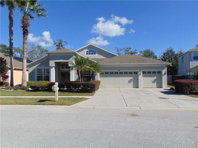 7030 Palmetto Pines Lane, Land O Lakes, FL 34637 (MLS #W7635795) :: Team Bohannon Keller Williams, Tampa Properties