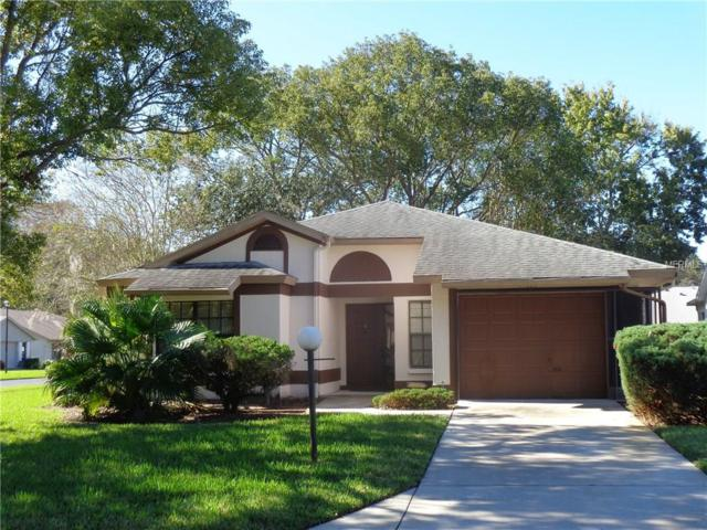 11529 Golden Rain Drive, New Port Richey, FL 34654 (MLS #W7635970) :: The Fowkes Group