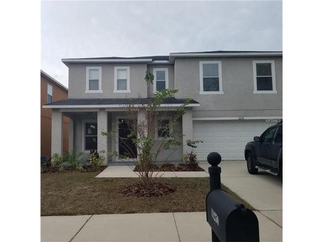 11250 Running Pine Drive, Riverview, FL 33569 (MLS #W7636040) :: The Duncan Duo & Associates