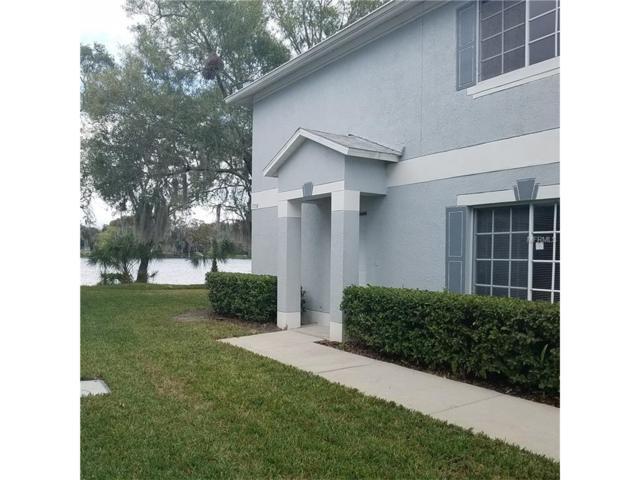 7358 E Bank Drive, Tampa, FL 33617 (MLS #W7636041) :: The Duncan Duo & Associates