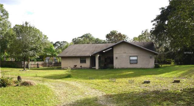 17230 Driftwood Lane, Lutz, FL 33558 (MLS #W7636181) :: Arruda Family Real Estate Team
