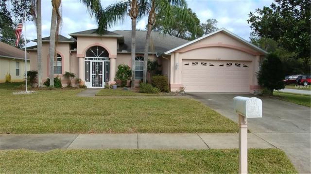 13367 Wrenwood Circle, Hudson, FL 34669 (MLS #W7636203) :: Arruda Family Real Estate Team