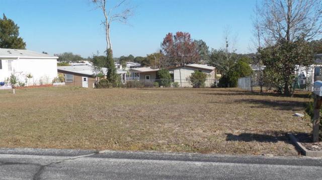 8248 Weatherford Avenue, Brooksville, FL 34613 (MLS #W7636395) :: Godwin Realty Group