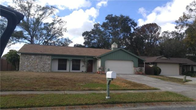 2719 Cypress Hollow Court, New Port Richey, FL 34655 (MLS #W7636657) :: The Duncan Duo Team