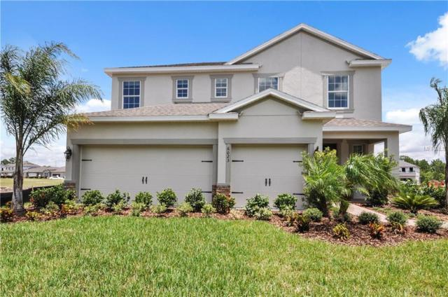 11302 Leland Groves Drive, Riverview, FL 33579 (MLS #W7636910) :: The Lockhart Team