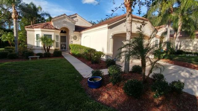 705 Lighthouse Drive, Tarpon Springs, FL 34689 (MLS #W7636915) :: Chenault Group