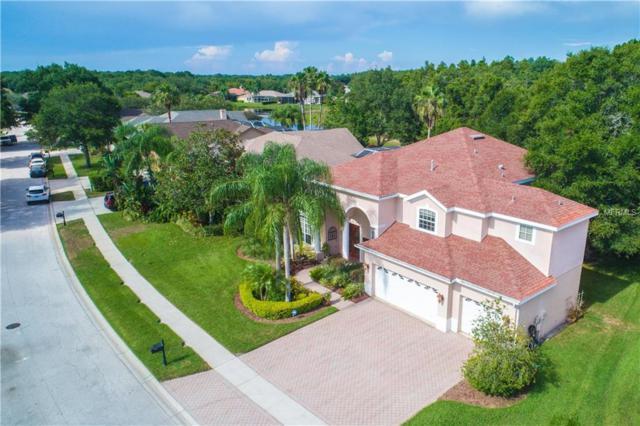 5105 Kernwood Court, Palm Harbor, FL 34685 (MLS #W7636924) :: Chenault Group