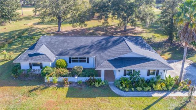 9378 Wallien Drive, Brooksville, FL 34601 (MLS #W7637010) :: Gate Arty & the Group - Keller Williams Realty