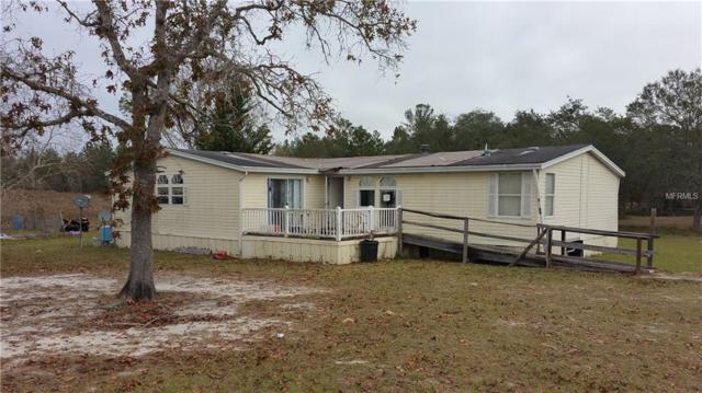 18446 Normandeau Street, Spring Hill, FL 34610 (MLS #W7637074) :: Griffin Group