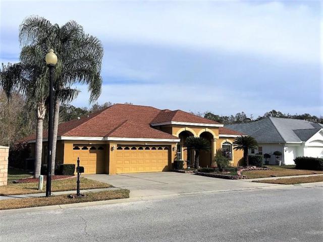 8007 Maidencane Drive, Trinity, FL 34655 (MLS #W7637187) :: Team Virgadamo