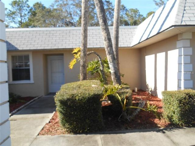3403 Trophy Boulevard, New Port Richey, FL 34655 (MLS #W7637300) :: The Duncan Duo Team