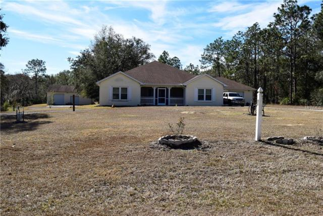 7133 Elaine Drive, Webster, FL 33597 (MLS #W7637311) :: Premium Properties Real Estate Services