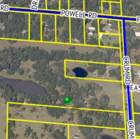 Crum Road, Brooksville, FL 34604 (MLS #W7637395) :: Griffin Group