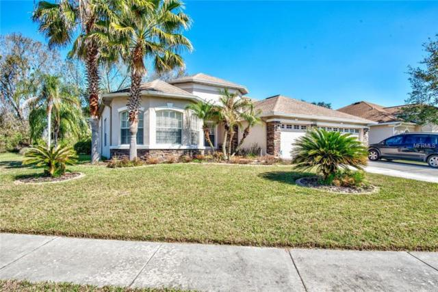23307 Dinhurst Court, Land O Lakes, FL 34639 (MLS #W7637418) :: Griffin Group