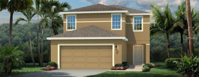 14426 Haddon Mist Drive, Wimauma, FL 33598 (MLS #W7637719) :: The Lockhart Team