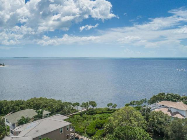 Grand Central Drive, Tarpon Springs, FL 34689 (MLS #W7637897) :: RE/MAX Realtec Group