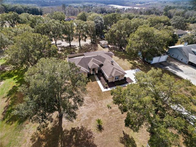 26142 Mountainview Boulevard, Brooksville, FL 34602 (MLS #W7637910) :: Godwin Realty Group