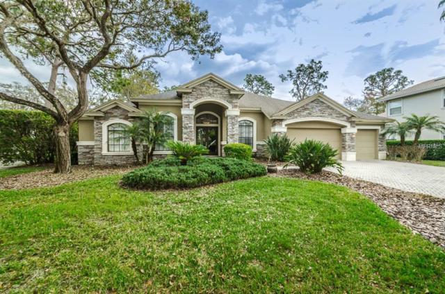 21253 Sky Vista Drive, Land O Lakes, FL 34637 (MLS #W7638015) :: Cartwright Realty