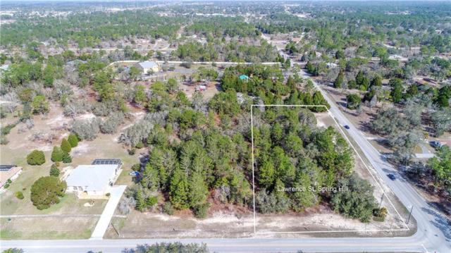 14163 Lawrence Street, Spring Hill, FL 34609 (MLS #W7638041) :: Griffin Group